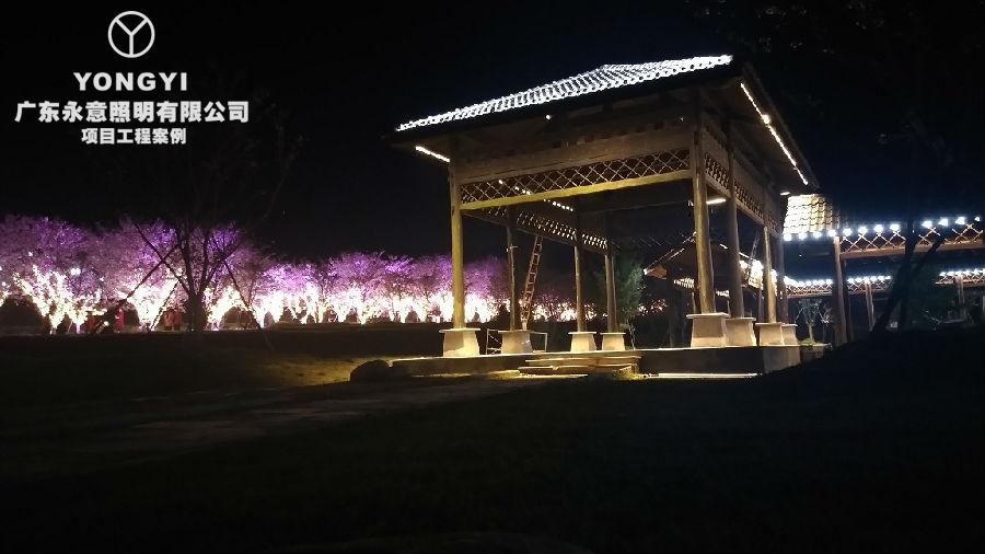 南昌凤凰沟景区夜景亮化